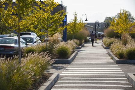Eleven Reasons You Should Have A Landscape Architect on Your Development Team